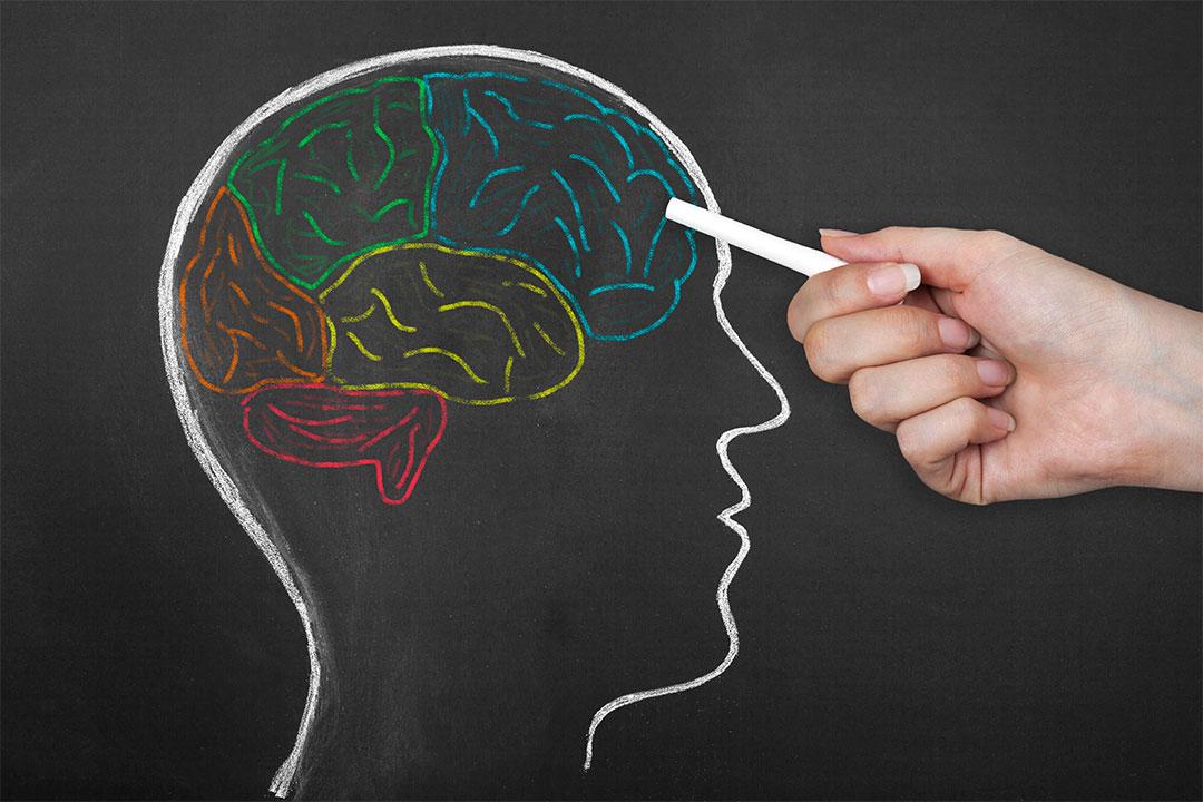 Infographic: hoe ons brein verschillende type content verwerkt